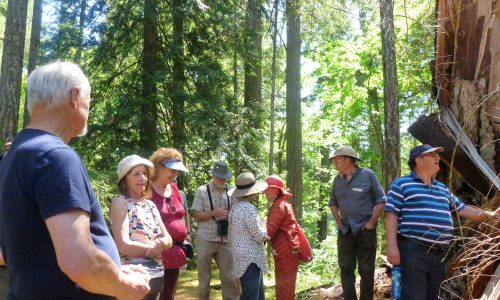 Bruce with group at Wildwood Ecoforest - June 15, 2019